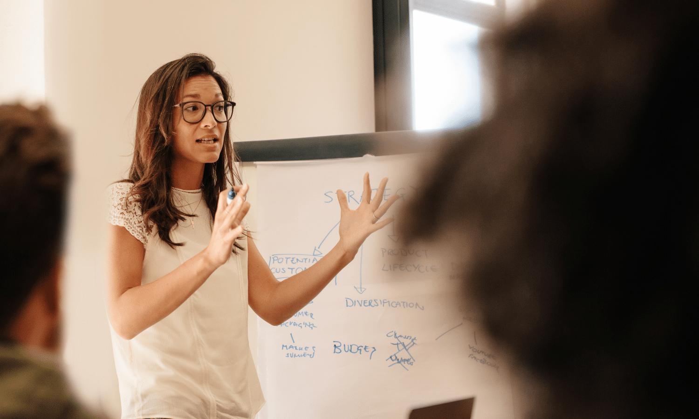 The High Performance Leadership Mindset Program